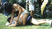 This give idea of action but is still from catfight video from my friends Mike's website.
